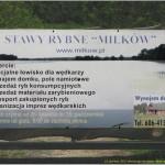 2013-06-21 Miłków stawy rybne  002 (800x591)