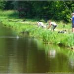 2013-06-21 Miłków stawy rybne  025 (800x602)